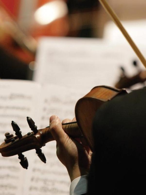 Musical performance at Thornton Oaks